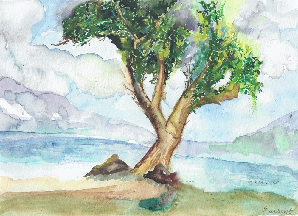 """Maui Beach Tree"" original fine art by Elizabeth Current"