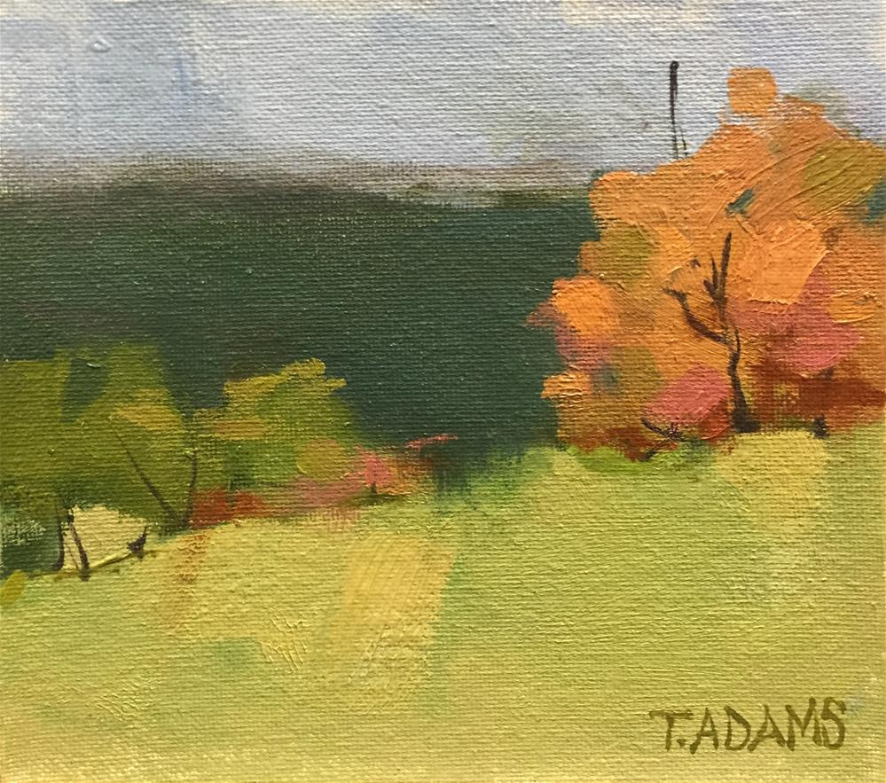 """Color Study"" original fine art by Trisha Adams"