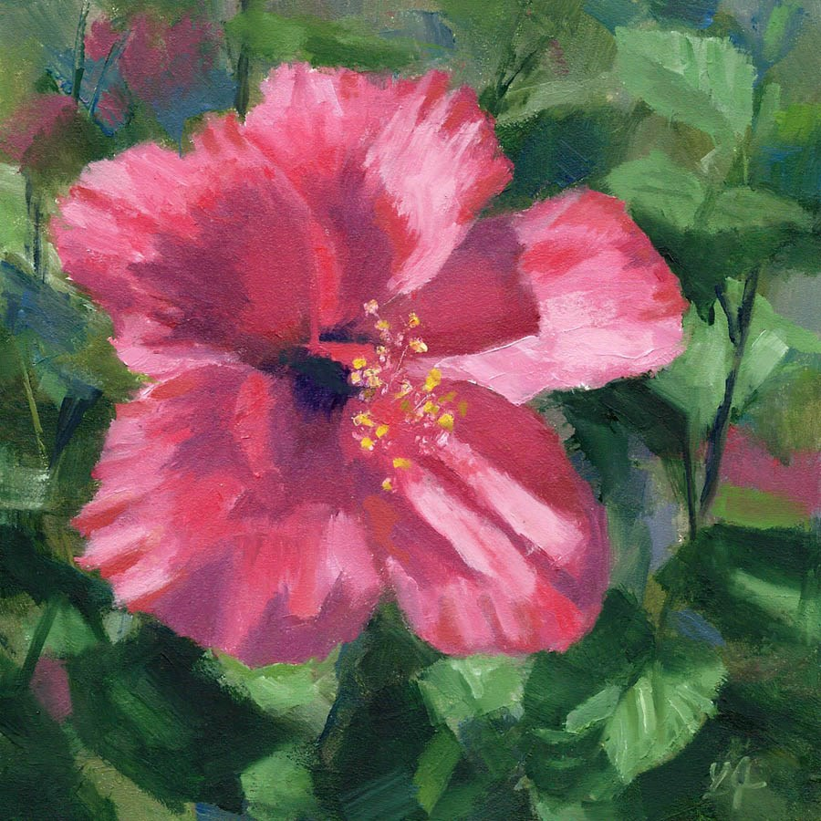 """Hibiscus in Pink"" original fine art by Linda Jacobus"