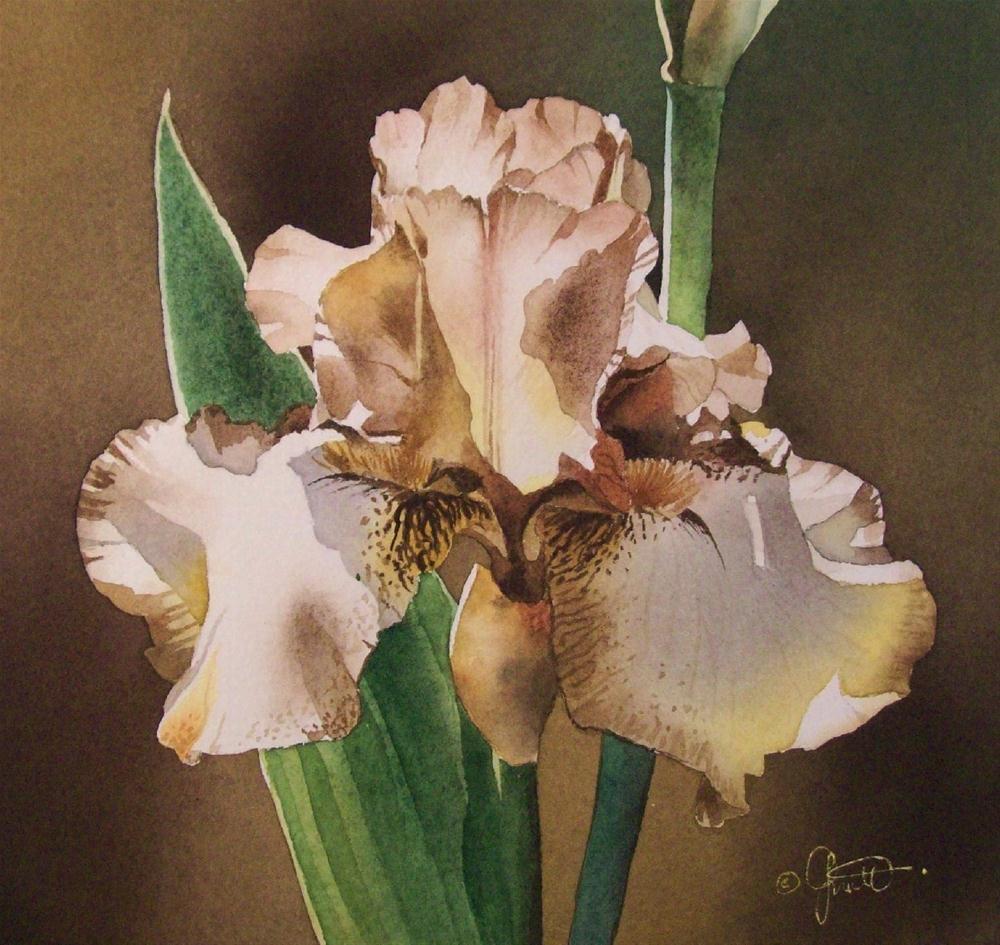 """Honey"" original fine art by Jacqueline Gnott, whs"