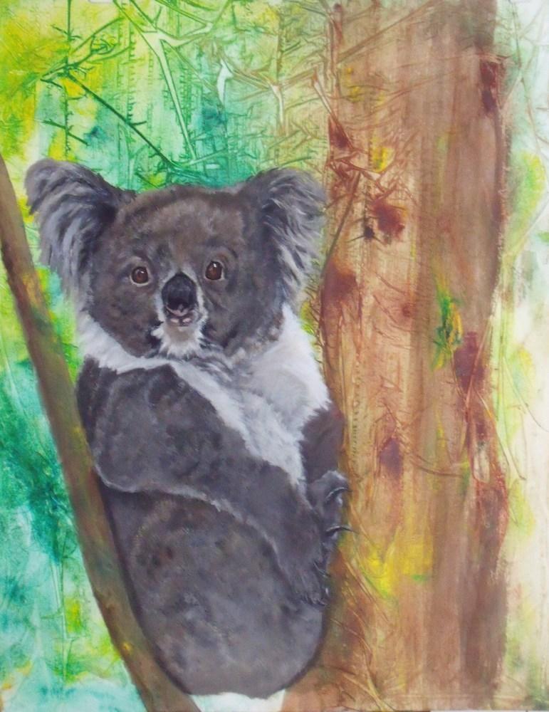 """Koala"" original fine art by Nelvia  McGrath"