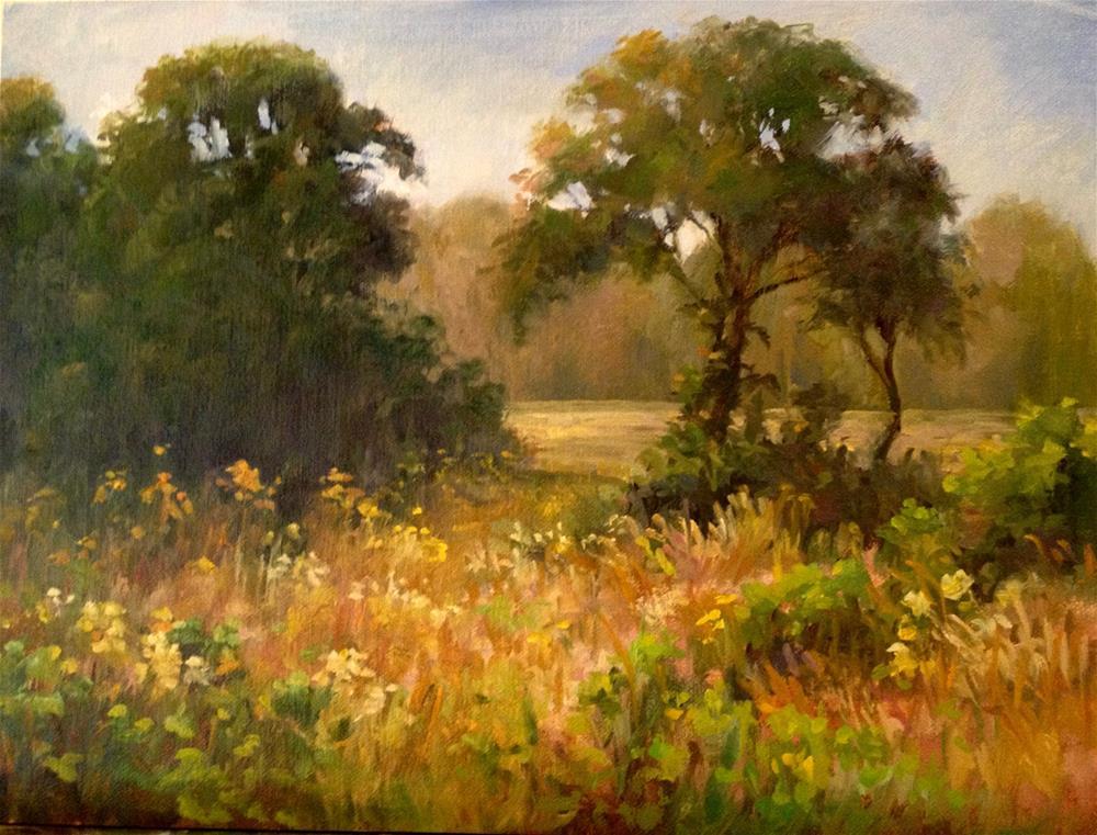 """""""Fall Fields"""" original fine art by Nancy Wahl"""