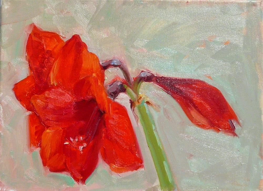"""Amaryllis,still life,oil on canvas,9x12,price$275"" original fine art by Joy Olney"
