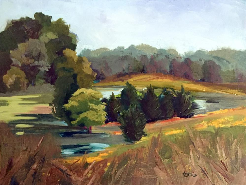 """Pond in the Valley"" original fine art by Andrea Jeris"