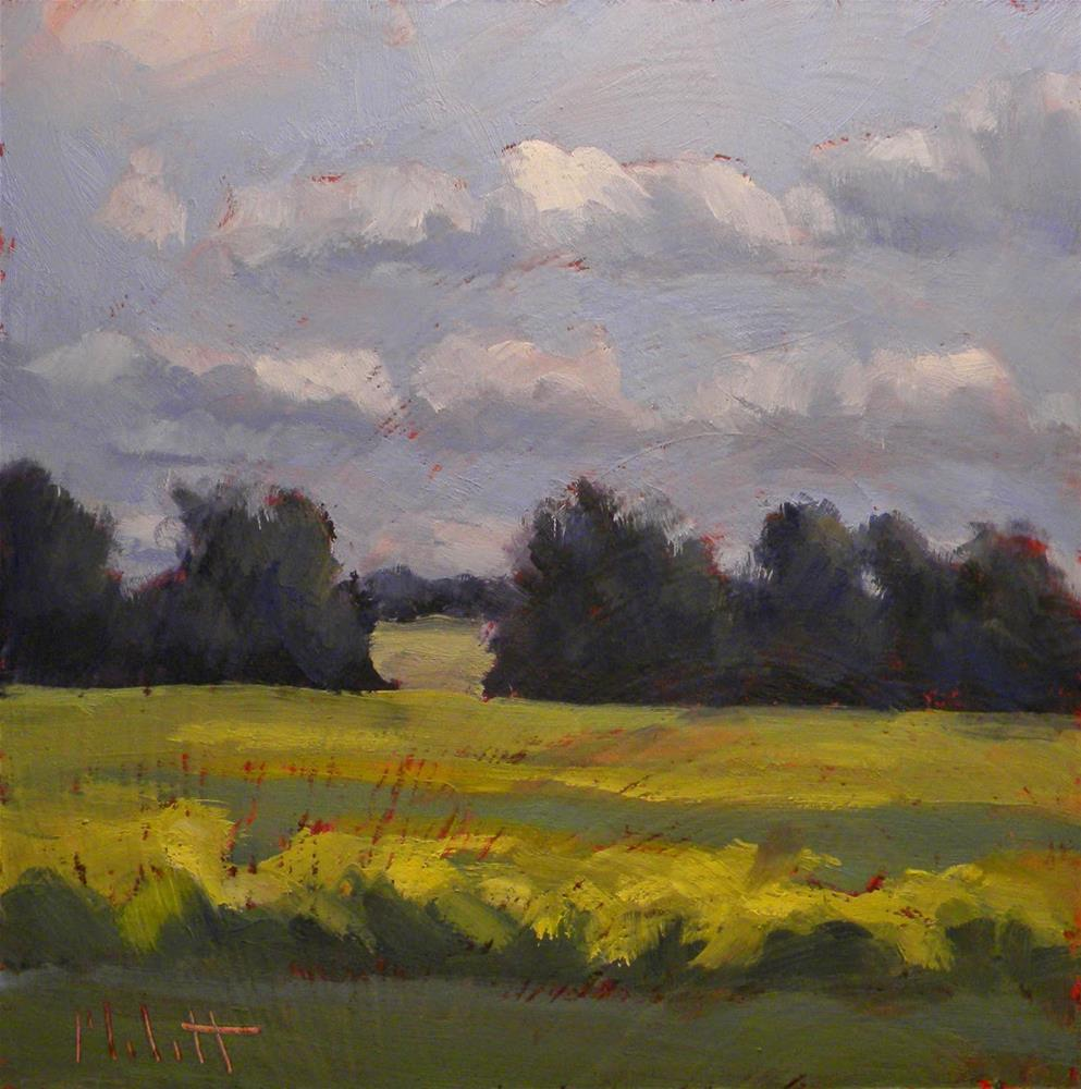 """Midwest Landscape Golden Fields Daily Oil Paintings"" original fine art by Heidi Malott"