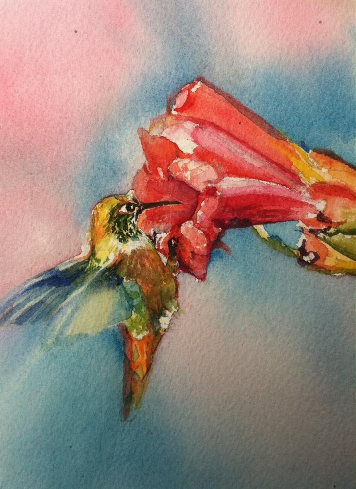 """Hummer on trumpet vine."" original fine art by Kathryn Kittell"