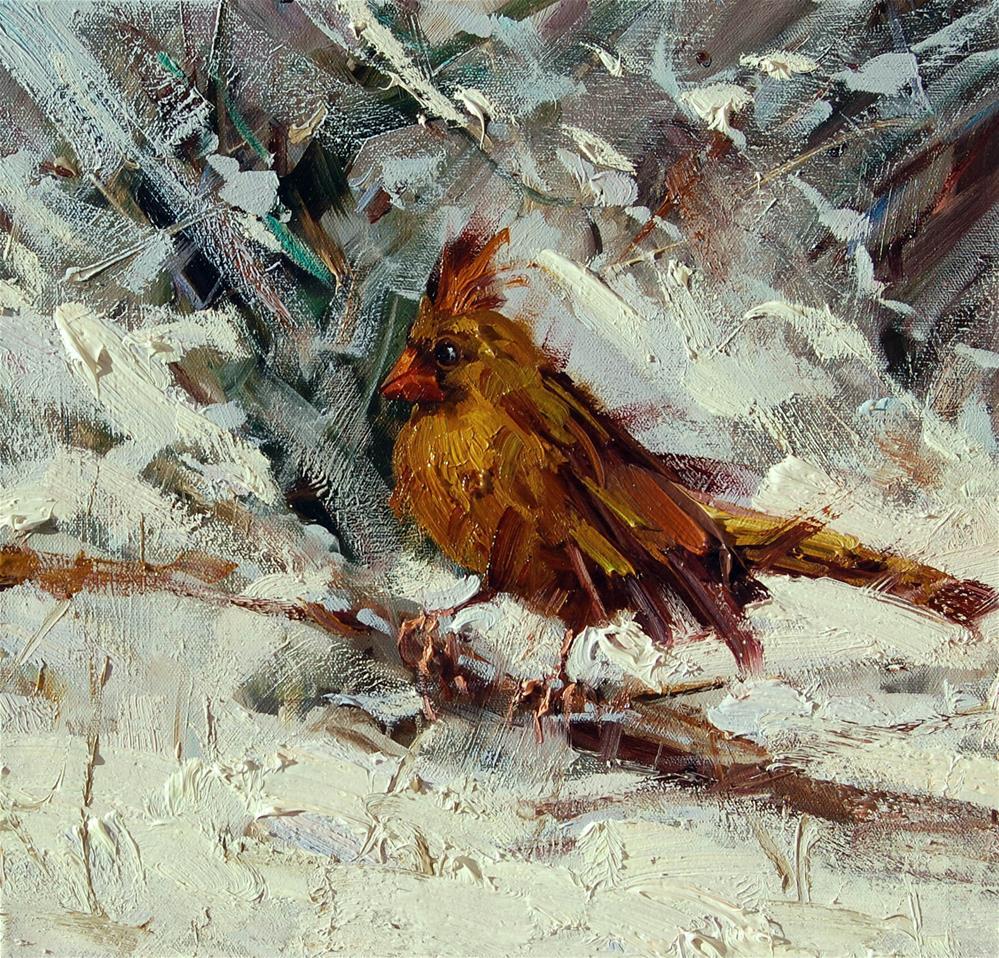 """Cardinal in winter"" original fine art by Mostafa Keyhani"