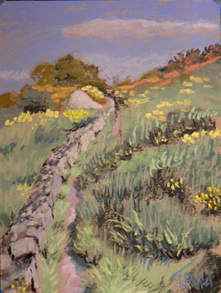 """Rock wall path"" original fine art by Toby Reid"