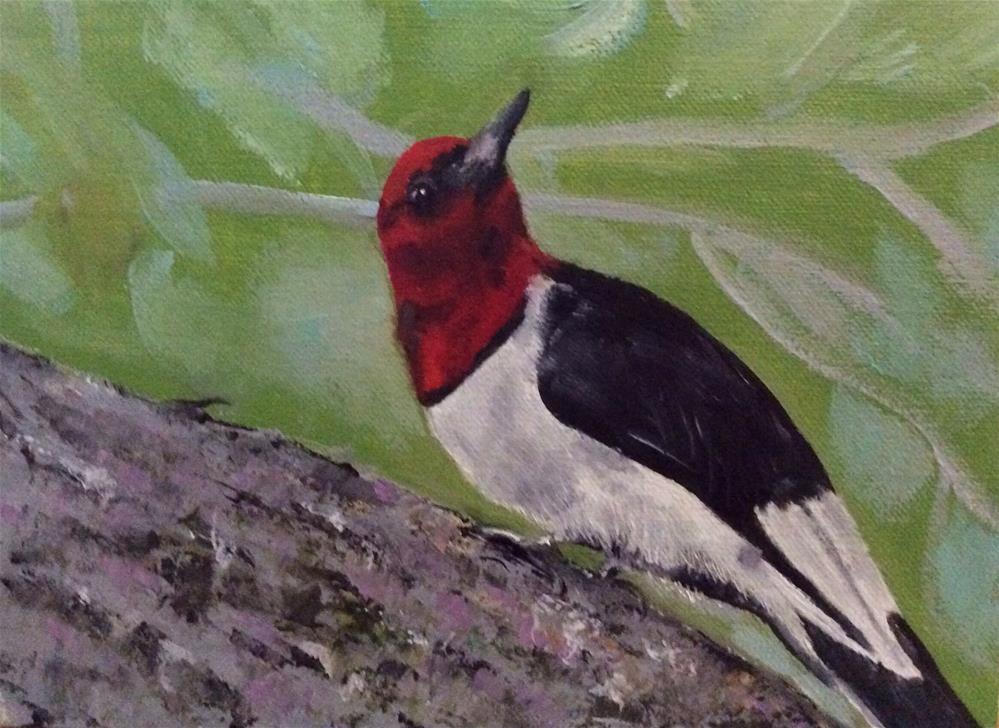 """Red headed Woodpecker"" original fine art by Charlotte Lough"