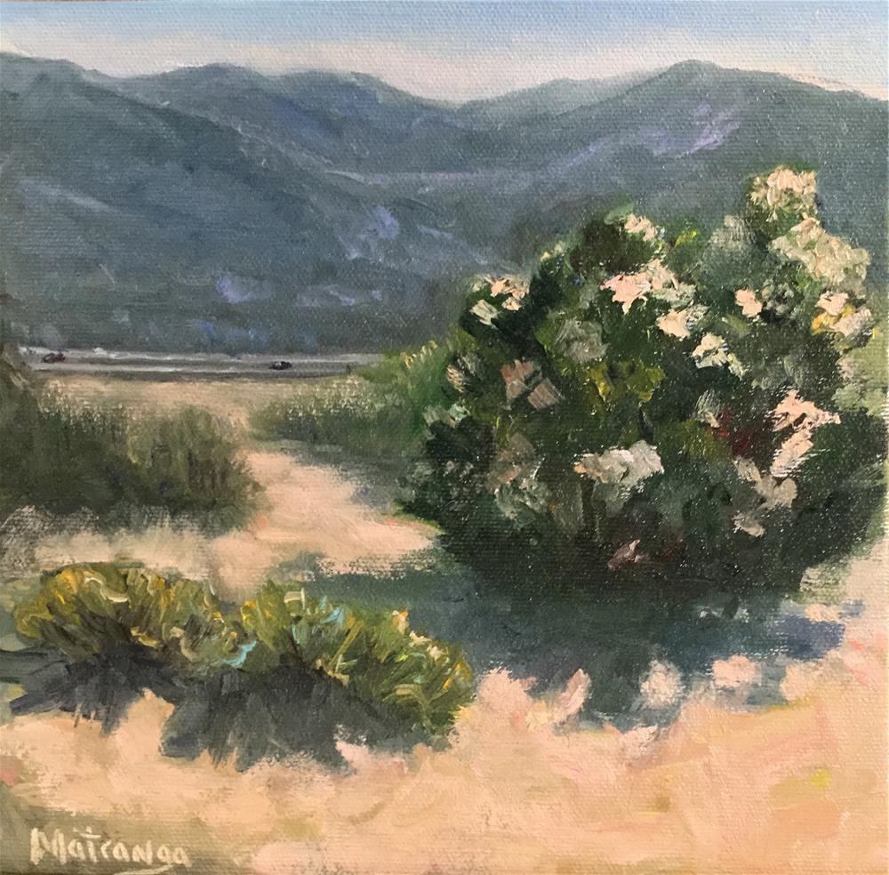 """Laguna Canyon View"" original fine art by Patricia Matranga"