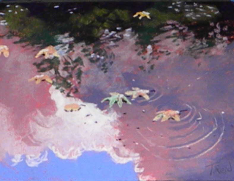 """Leaves and cloud reflections"" original fine art by Toby Reid"