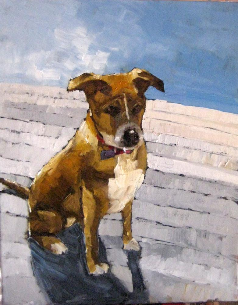 """Jessie"" original fine art by Marcia Hodges"