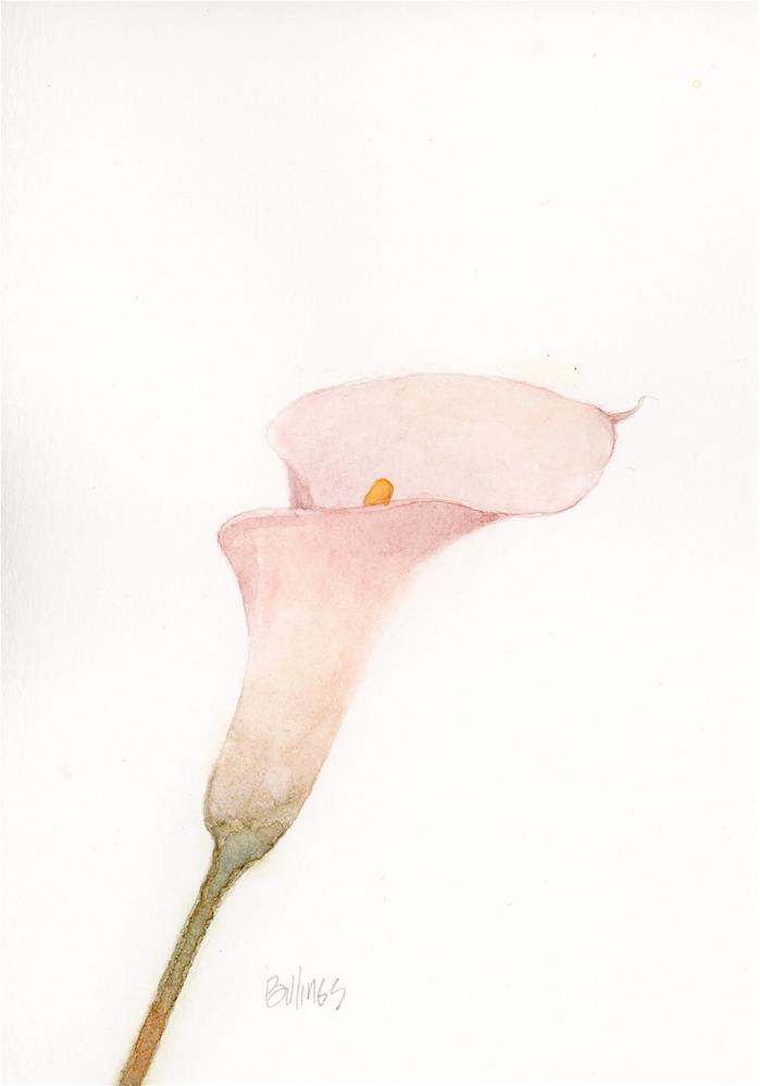 """Pink Calla Study I"" original fine art by Susanne Billings"