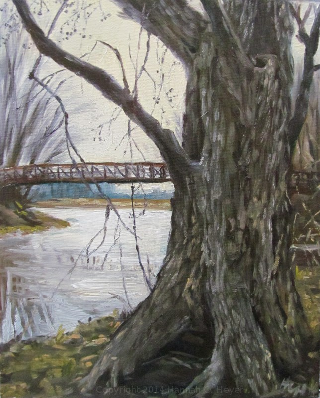 """Maple on the Marsh Trail"" original fine art by Hannah C. Heyer"