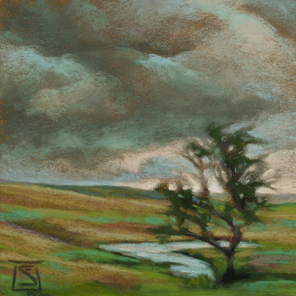 """Approaching Storm"" original fine art by Sheila Evans"