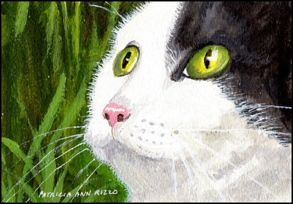 """Here Kitty Kitty"" original fine art by Patricia Ann Rizzo"