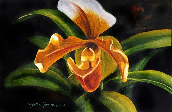 """Gold Orchid"" original fine art by Monika Pate"