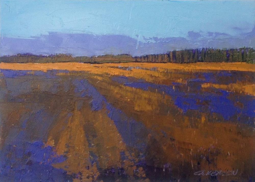 """Spring Fields, Evening Shadows"" original fine art by Mary Gilkerson"