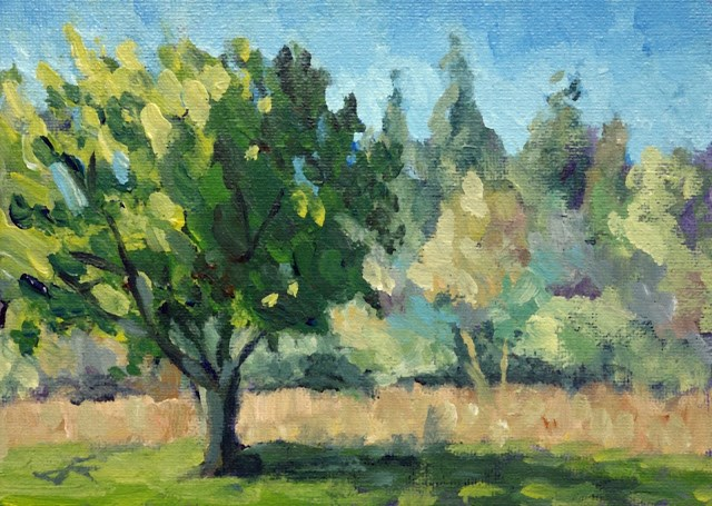 """Tree Study"" original fine art by J. Farnsworth"