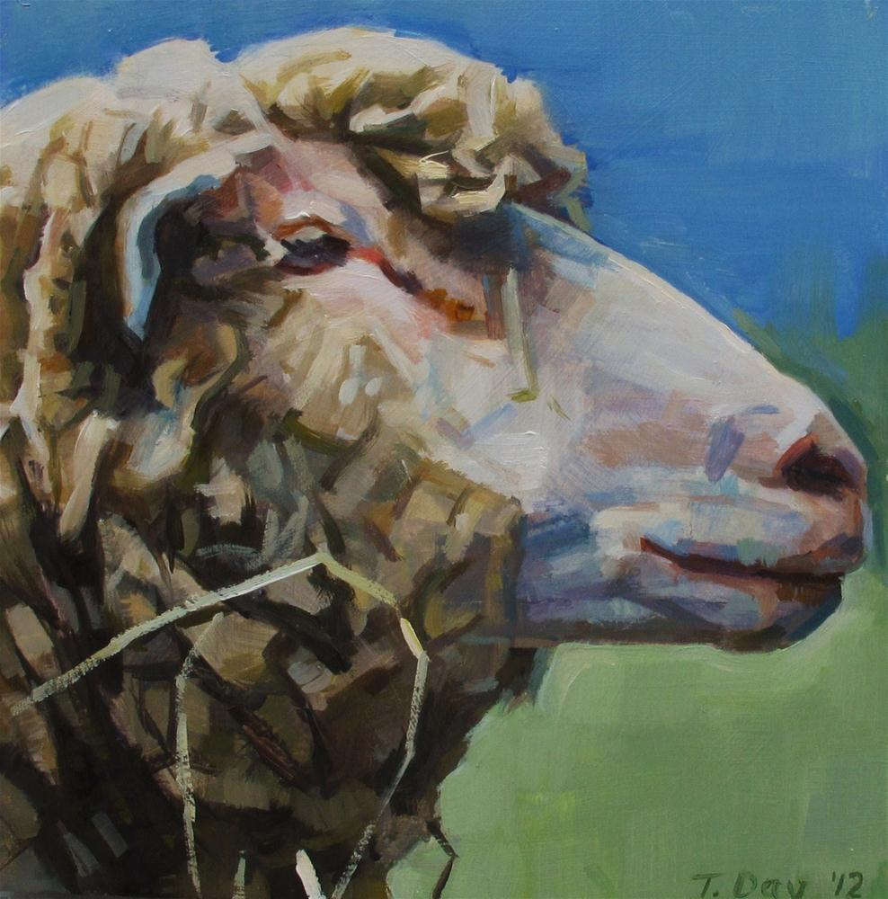 """Sheep Revisited"" original fine art by Taryn Day"