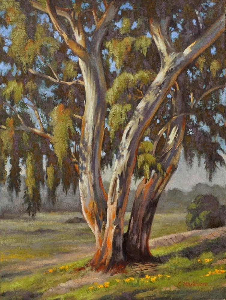 """""""Sunny Eucalyptus"""" original fine art by Connie McLennan"""