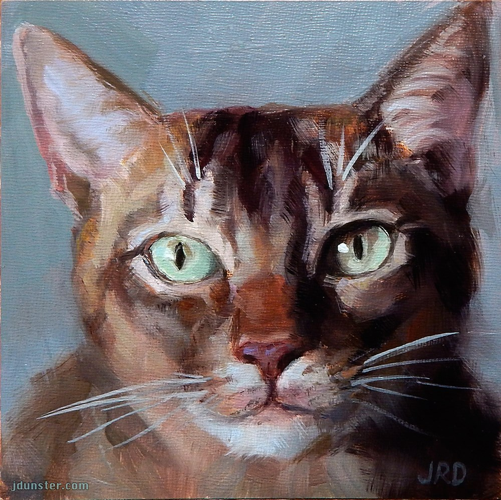 """Intense Kitty Head"" original fine art by J. Dunster"