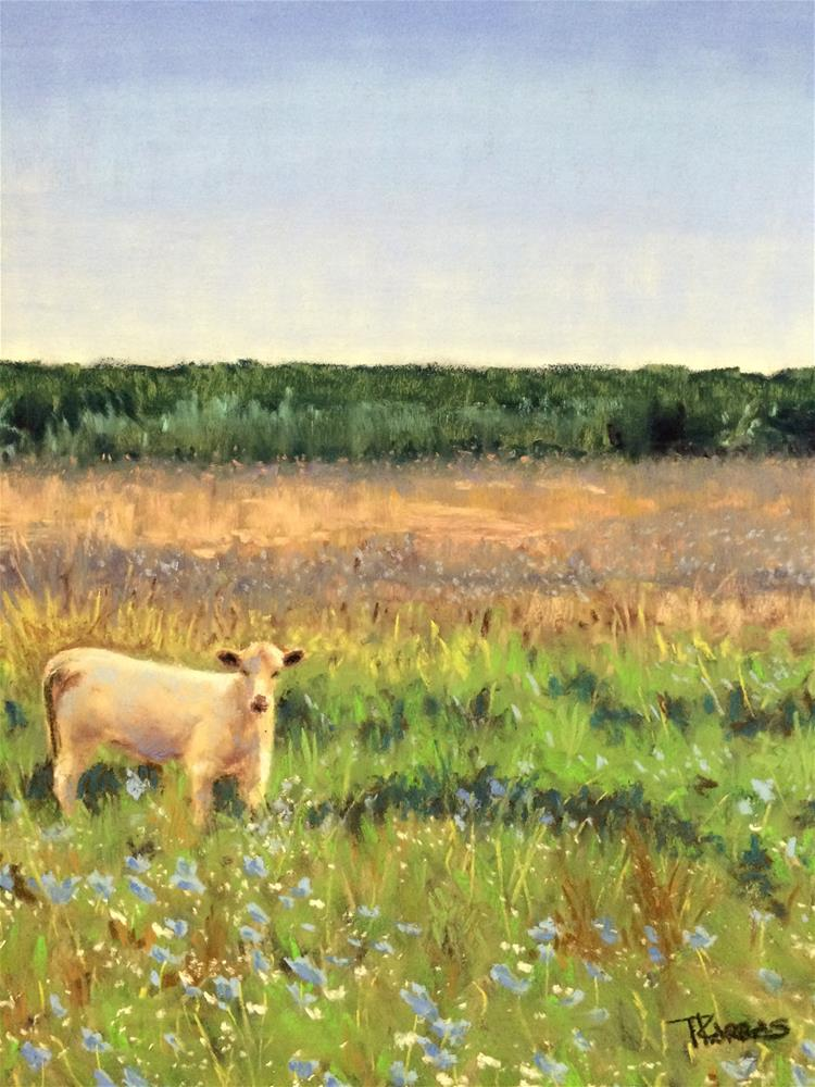 """Morning Pasture"" original fine art by Christina Karras"