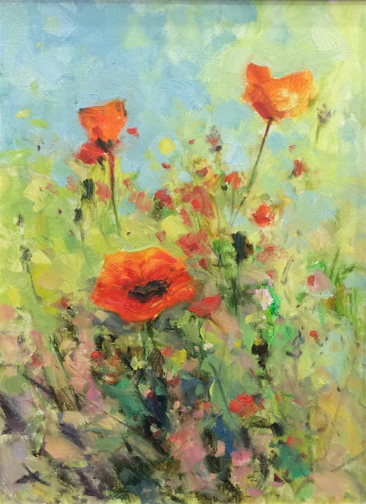 """Poppies in the Meadow"" original fine art by John Shave"