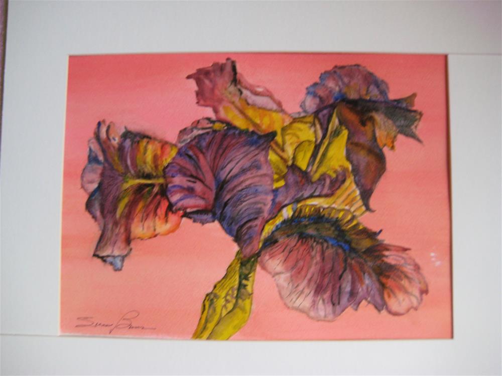 """Vivid Iris"" original fine art by Susan Brens"