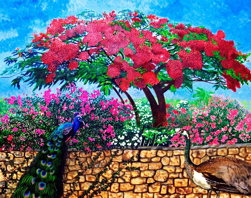 """Peacock"" original fine art by Alan Mintz"