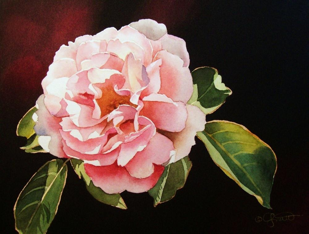 """Pink Rose II"" original fine art by Jacqueline Gnott, whs"