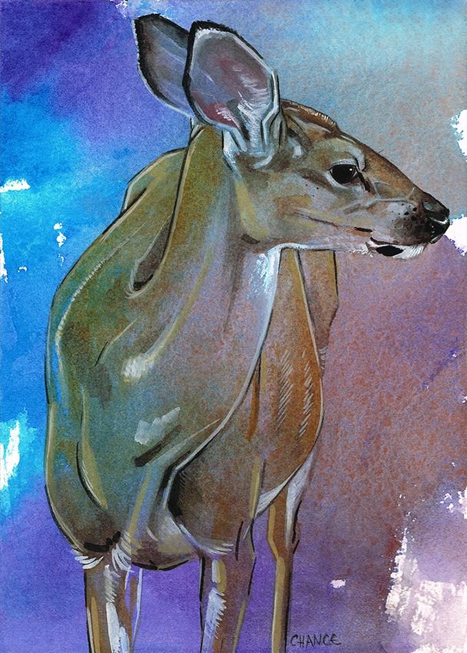 """""""No. 37 Deer"""" original fine art by Annabel Chance"""