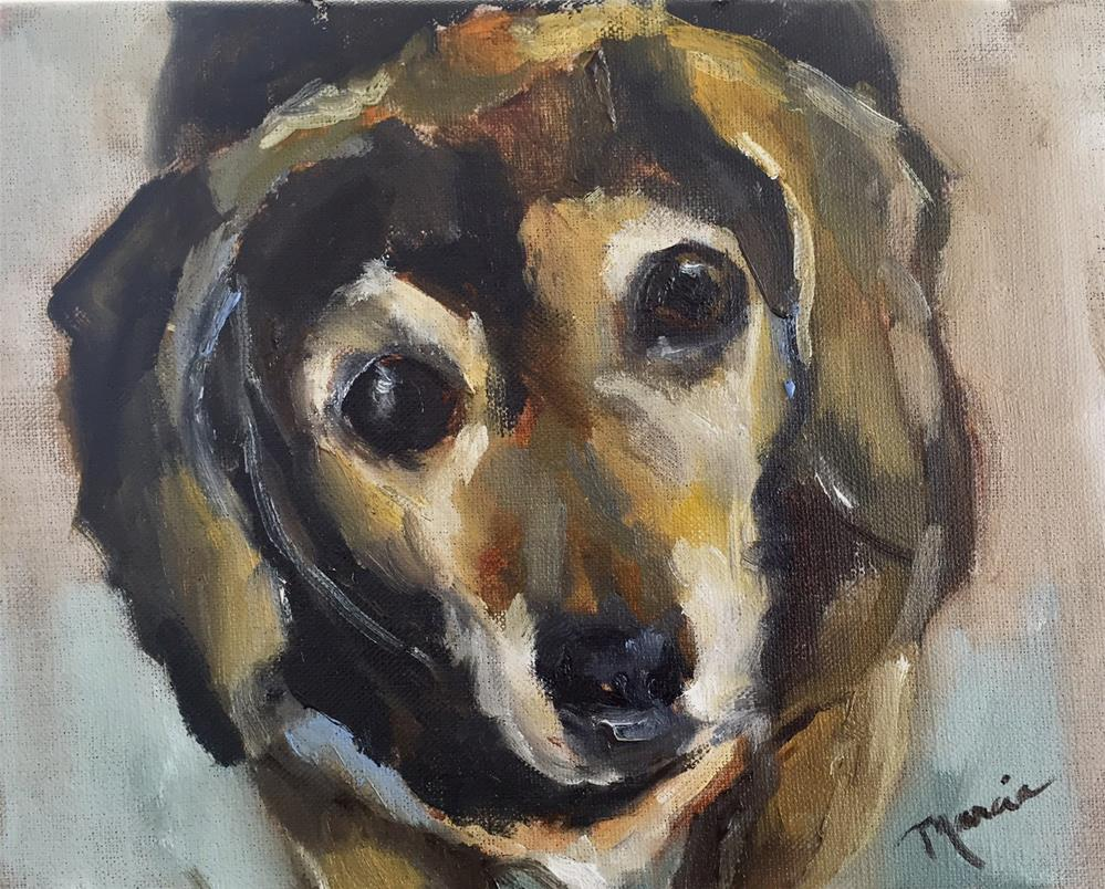 """Molly"" original fine art by Marcia Hodges"