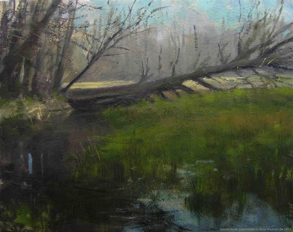 """Stormdamage"" original fine art by René PleinAir"