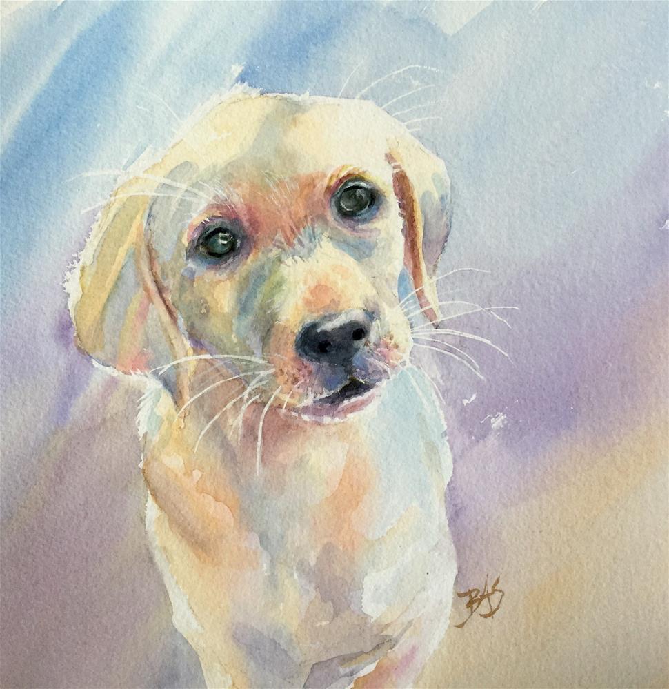 """""""All Eyes"""" original fine art by Barbara Scheihing"""
