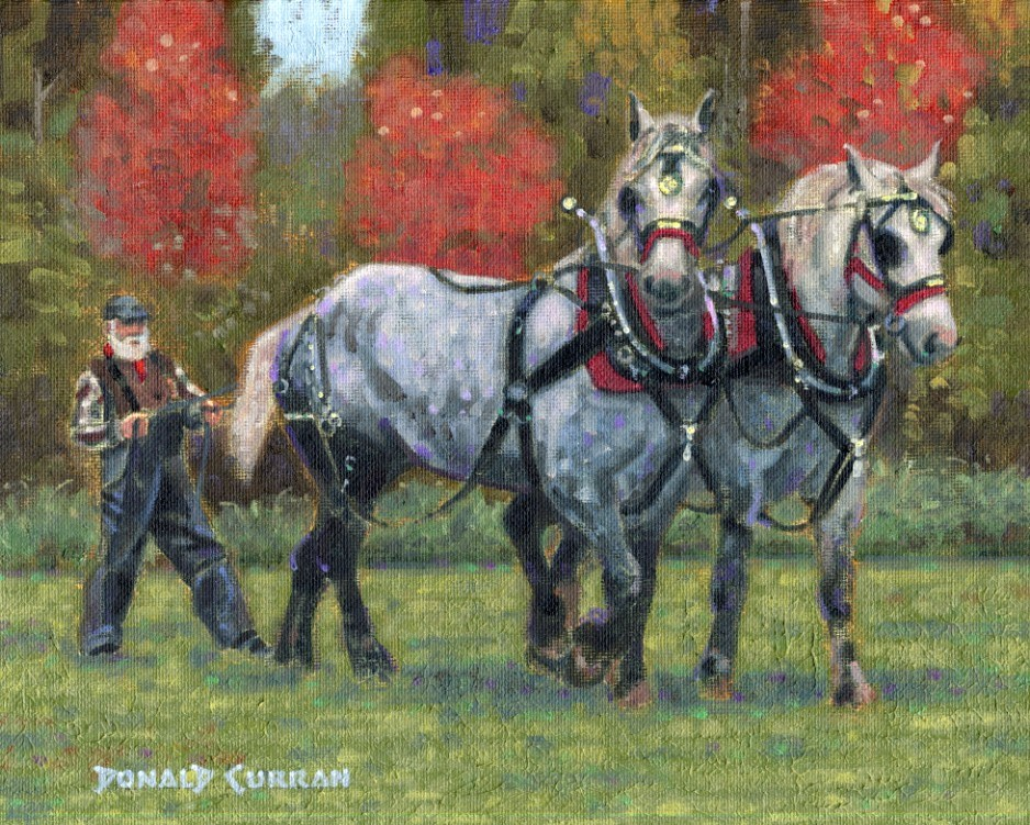 """Team of Horses"" original fine art by Donald Curran"