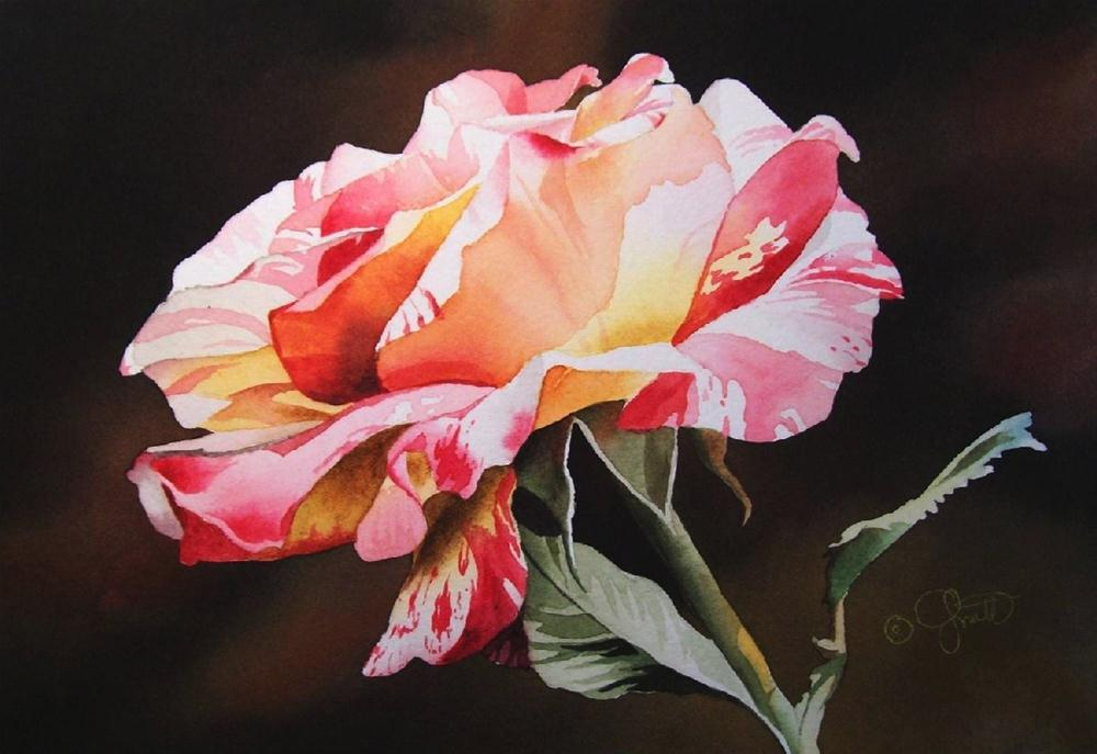 """Rainbow Rose"" original fine art by Jacqueline Gnott, whs"