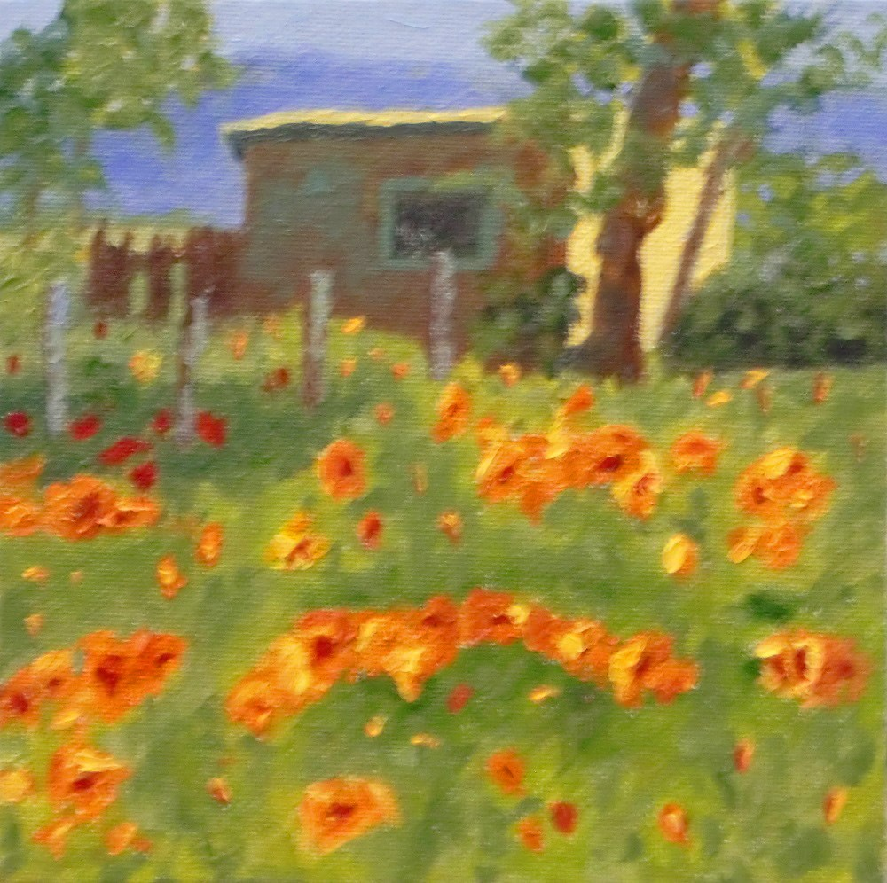 """poppies blooming"" original fine art by karen richardson"