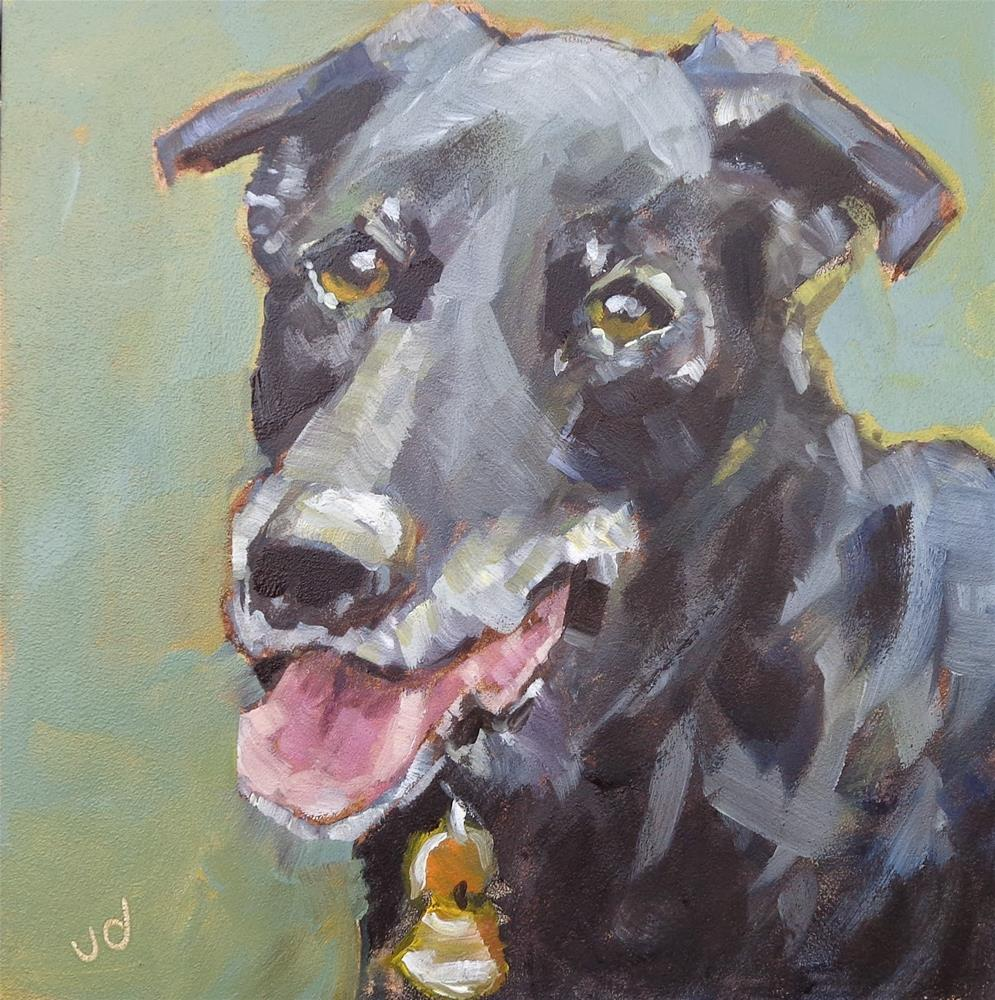 """Bailey"" original fine art by Jean Delaney"