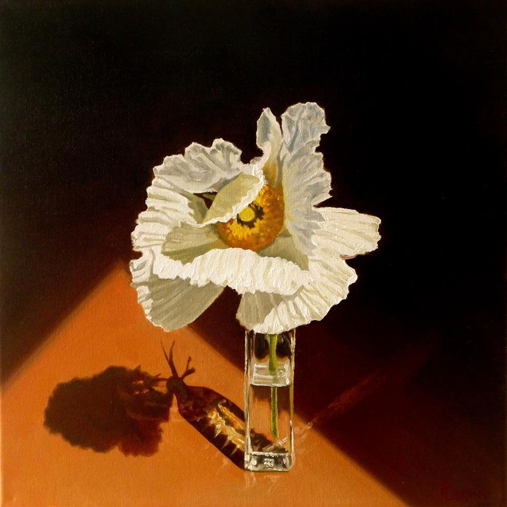 """""""Papillon"""" original fine art by Peter Lentini"""