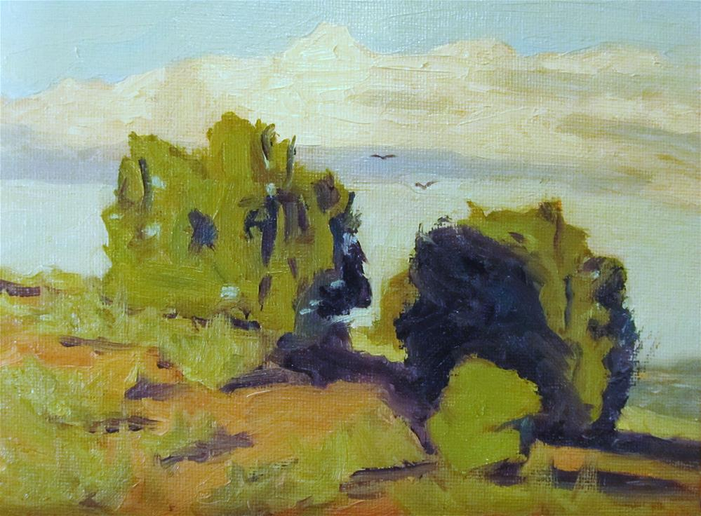 """Juniper Trees"" original fine art by Kaia Thomas"