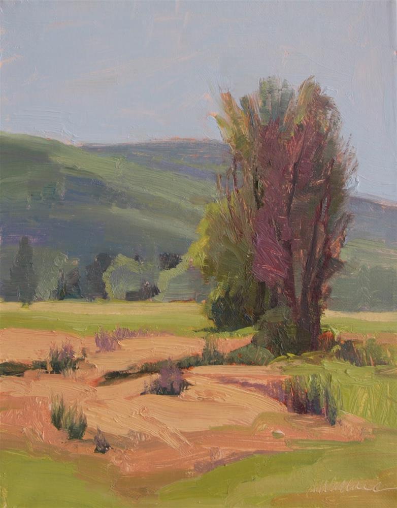 """""""#110  field trees in April"""" original fine art by Nancy Wallace"""