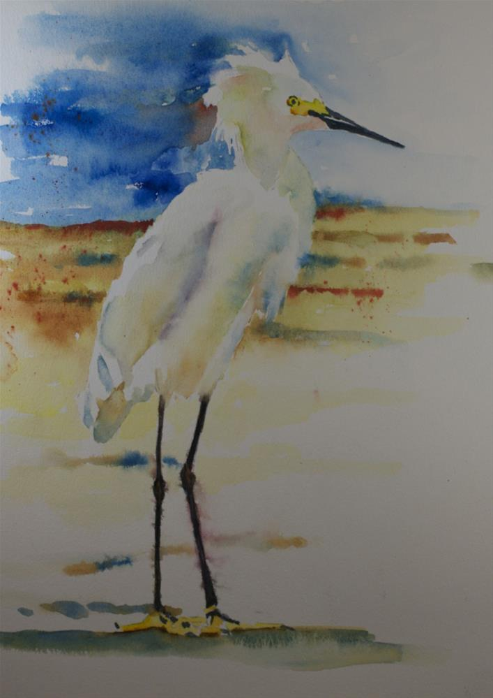 """Snowy Egret #1"" original fine art by Sue Churchgrant"