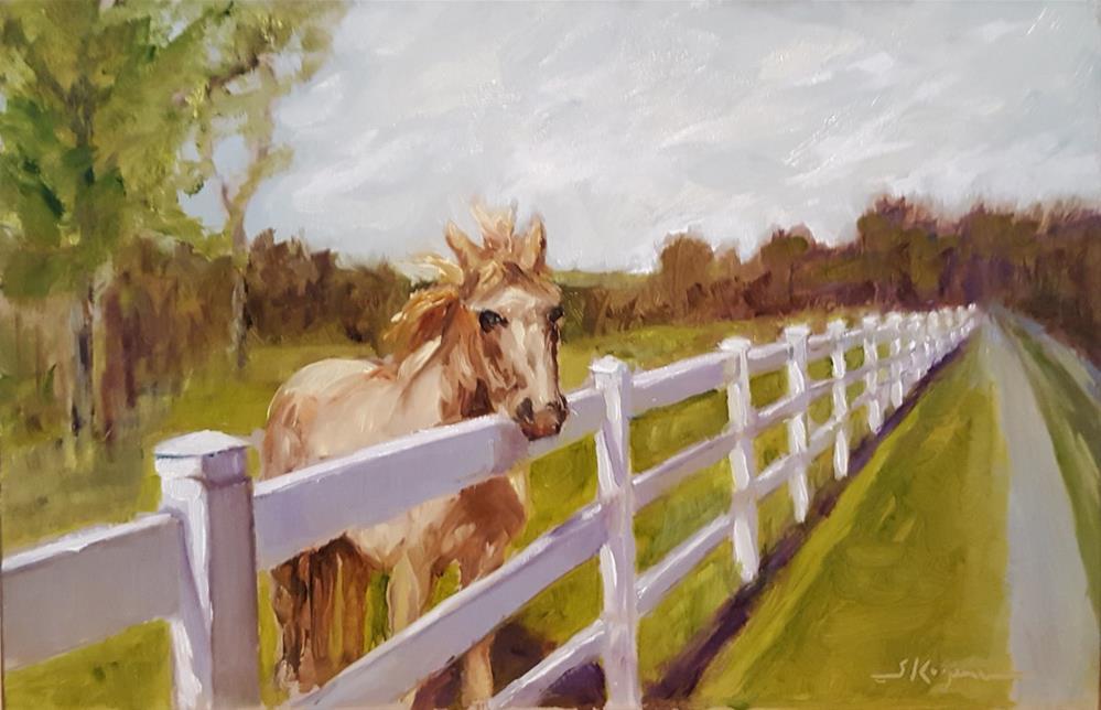 """""""Fenced In"""" original fine art by Shelley Koopmann"""