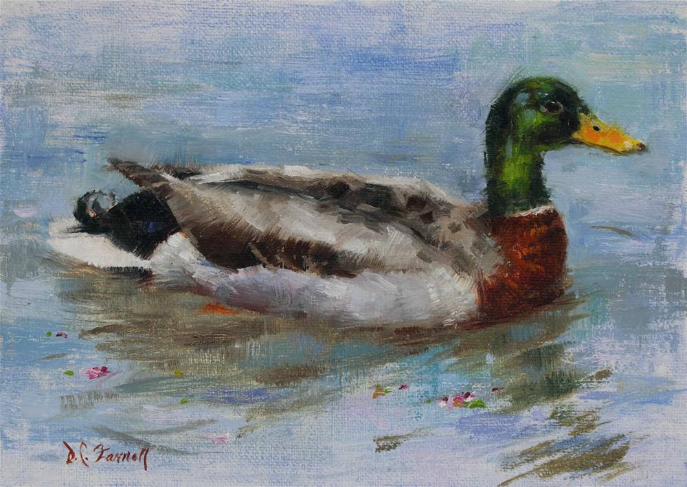 """Mallard Drake"" original fine art by Donna C Farrell"
