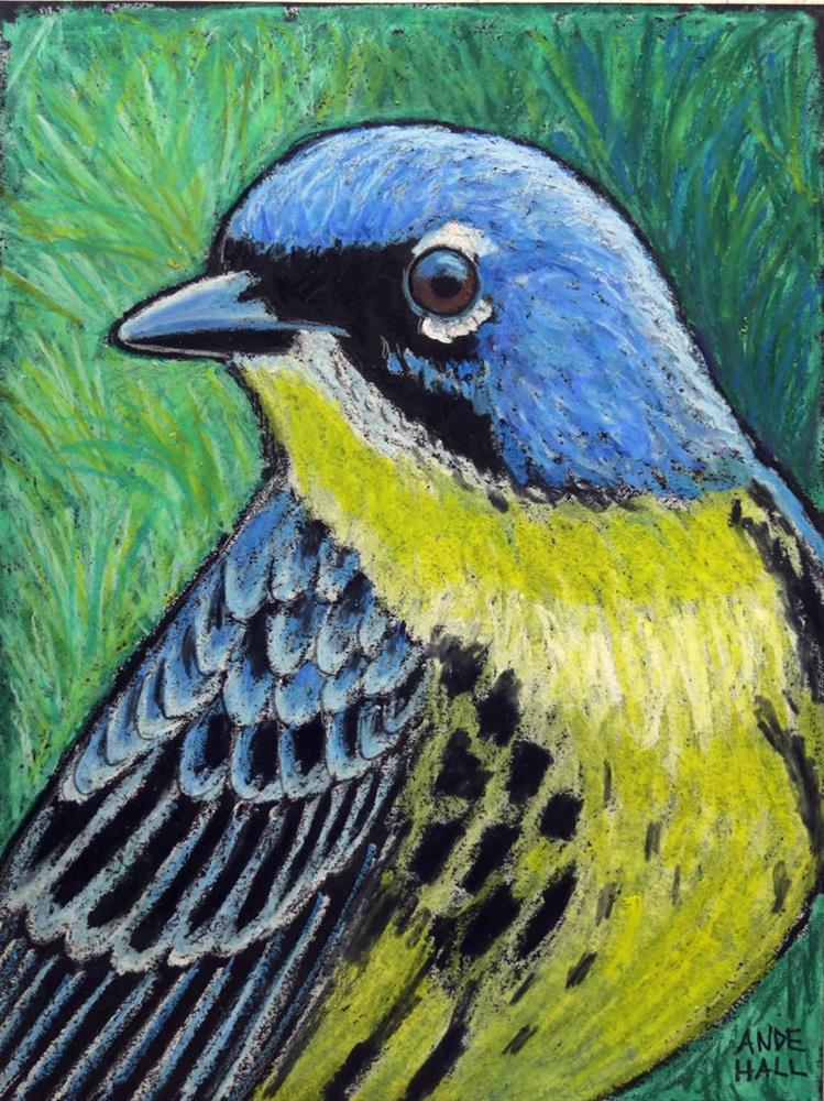 """Kirtland's Warbler"" original fine art by Ande Hall"