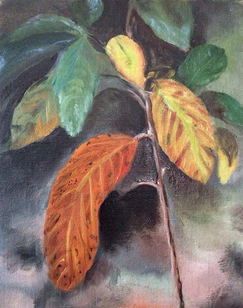 """Almost Winter at Big Cedar"" original fine art by Charlotte Lough"