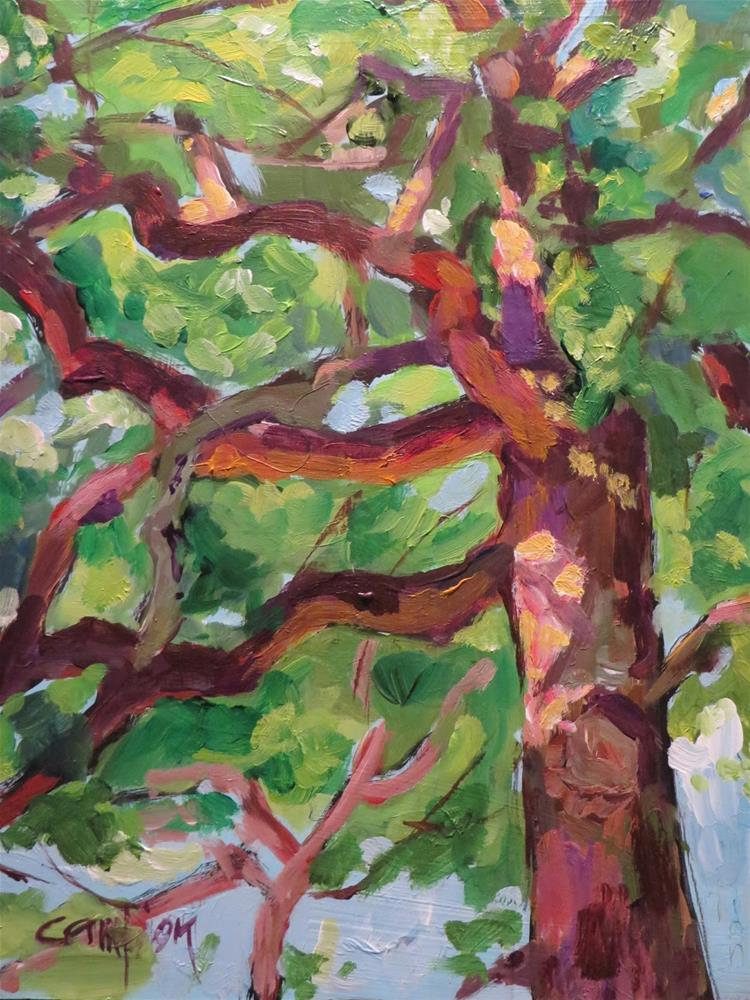 """635 The Mighty Oak in Spring"" original fine art by Diane Campion"