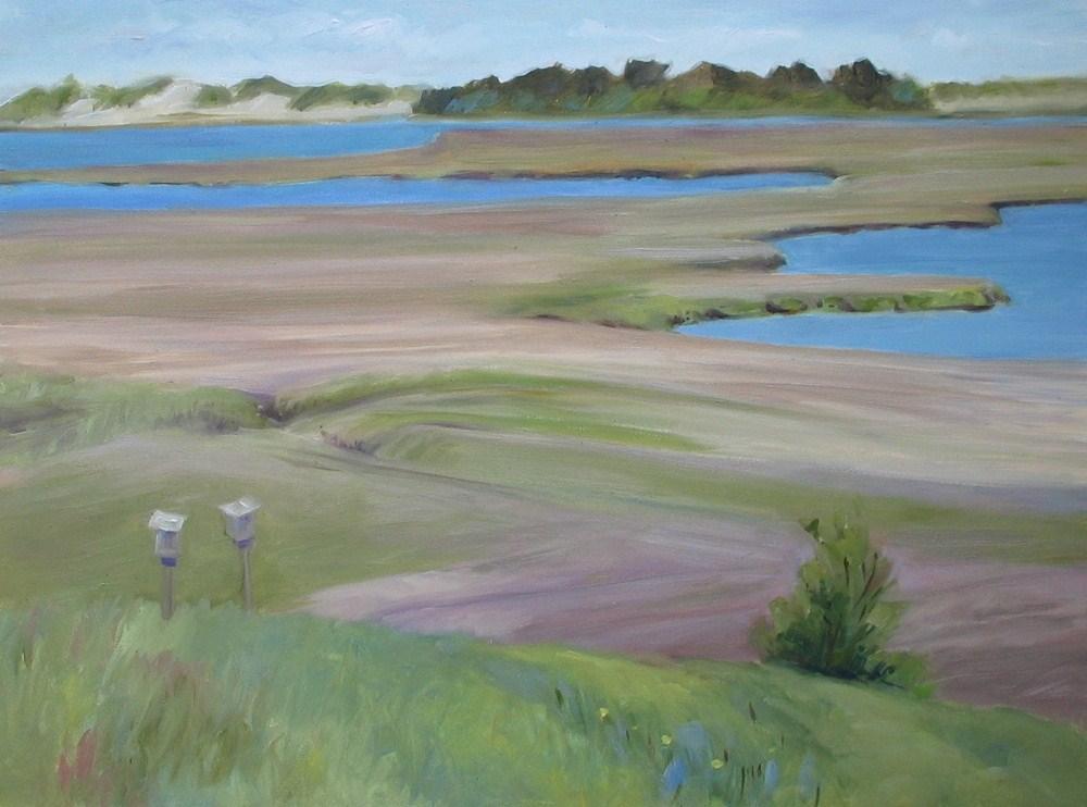 """Spring Marsh"" original fine art by Lynne Schulte"