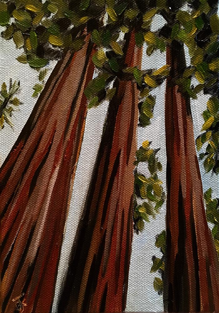"""Redwood Giants"" original fine art by Bobbie Cook"